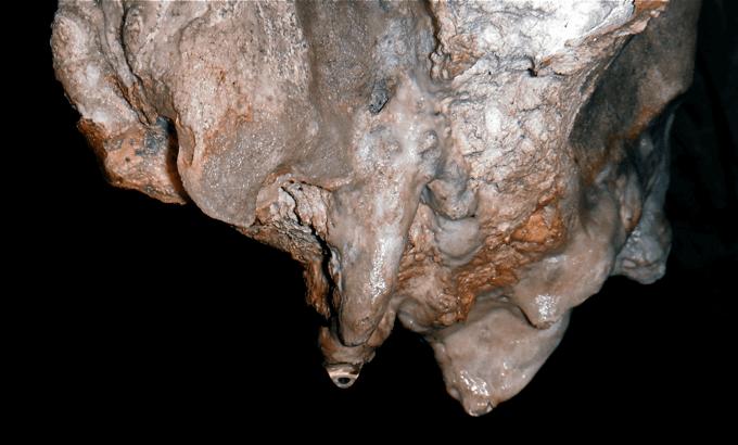 espeleologia-malaga-estalactita