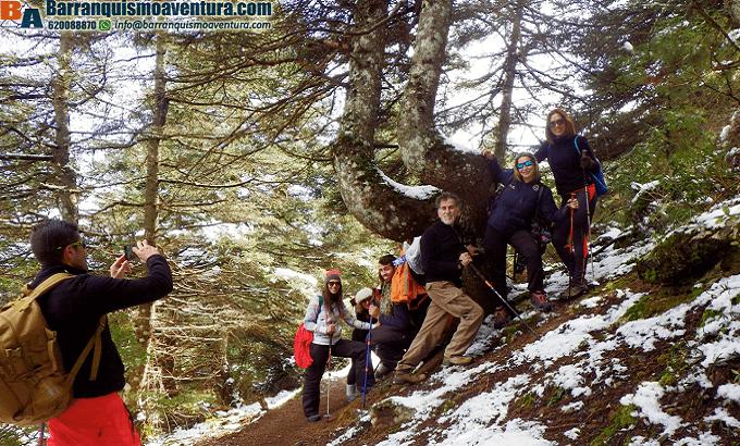 Senderismo en el pinsapar de Zarzalones en la Sierra de las Nieves
