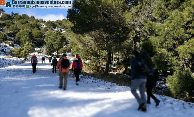 Ruta de senderismo por la Sierra de las Nieves, cerca de la Serranía de Ronda